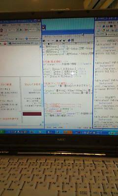 20080625095849.jpg
